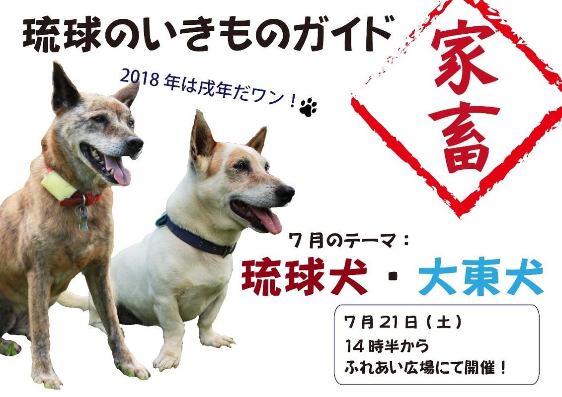 琉球のいきものガイド~家畜編~