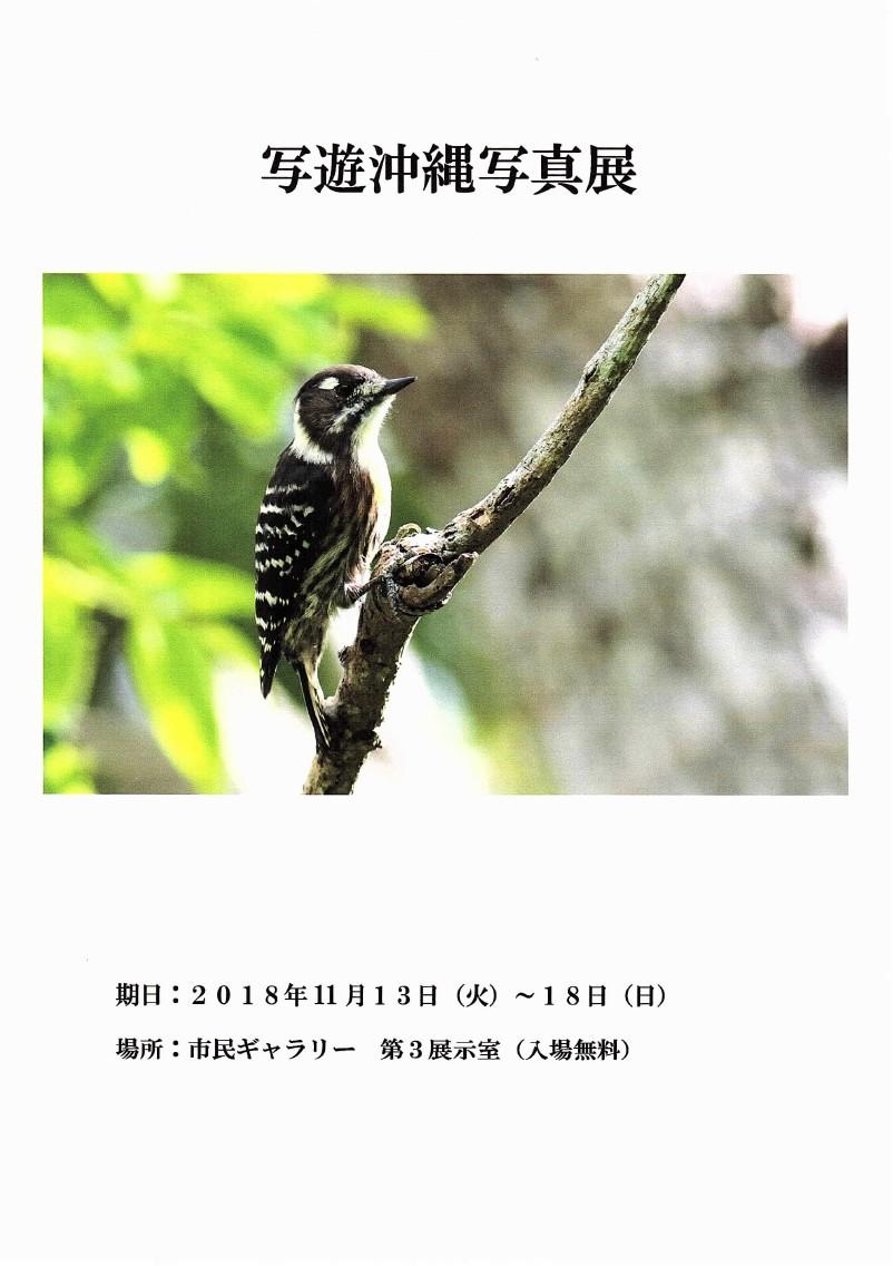 写遊沖縄写真展