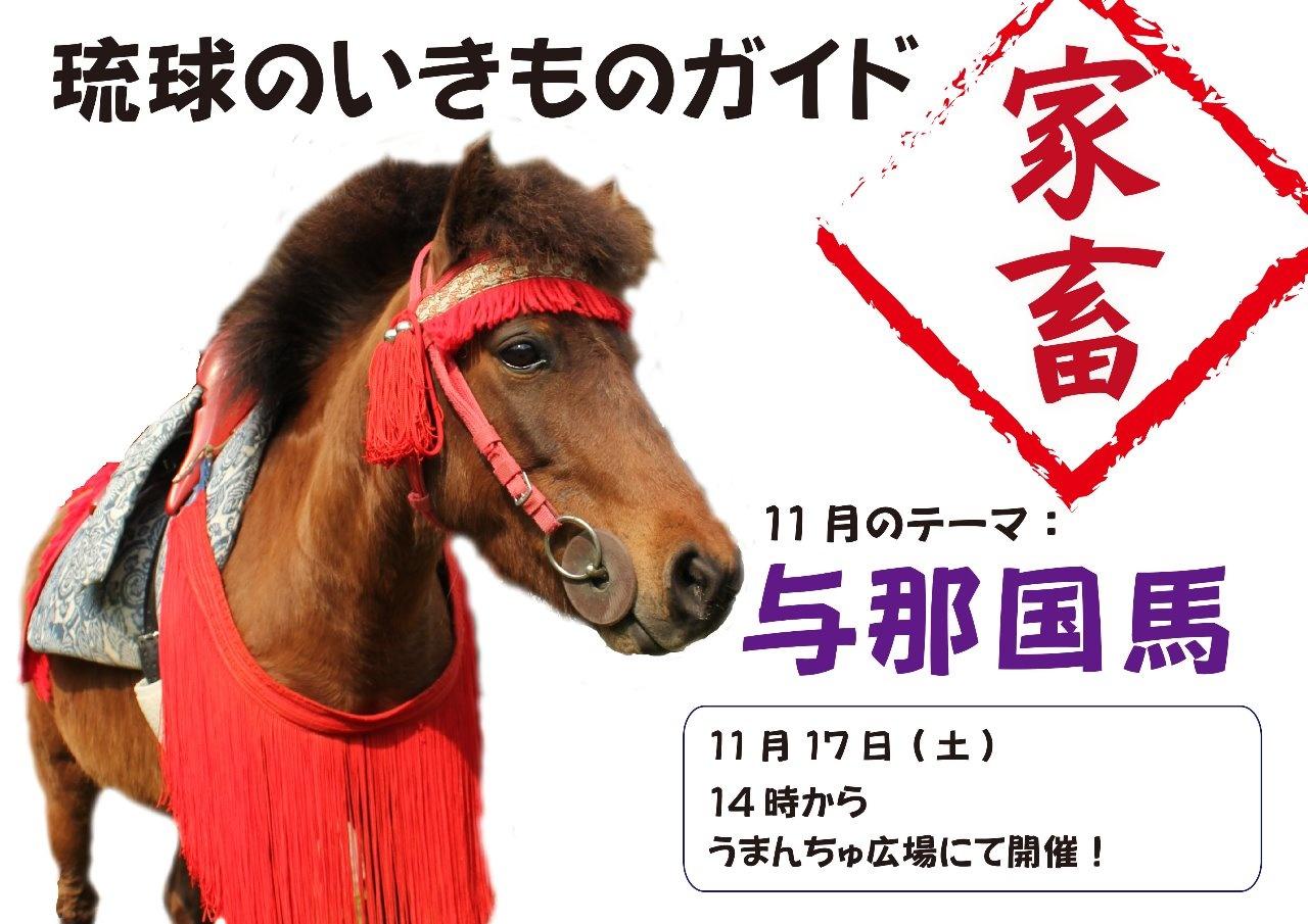 琉球のいきものガイド~家畜編・与那国馬~