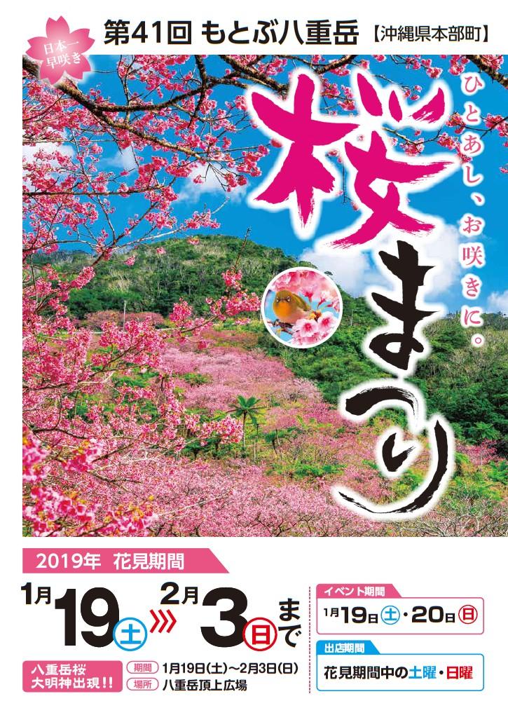 第41回 もとぶ八重岳桜まつり