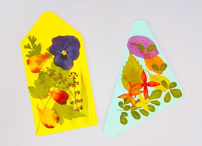 沖縄の植物体験イベント「押し花のしおり作り&植物観察ツアー」