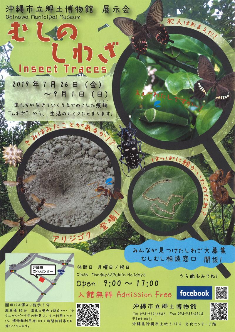 展示会「むしのしわざ Insect Traces」