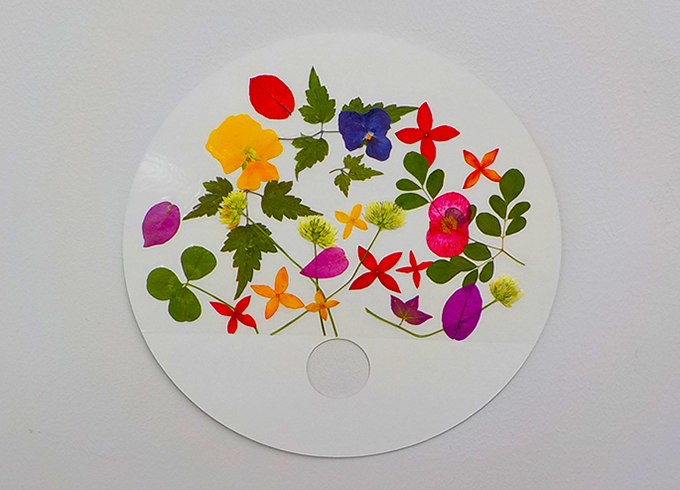 沖縄の植物体験イベント「花のうちわ作り&植物観察ツアー」