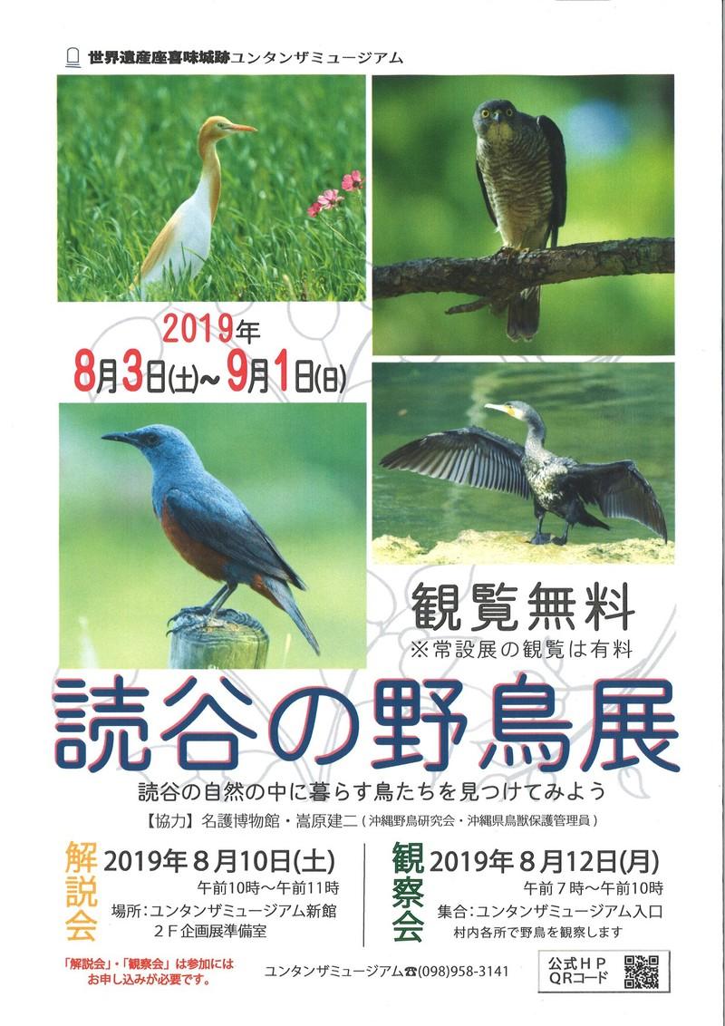 読谷の野鳥展