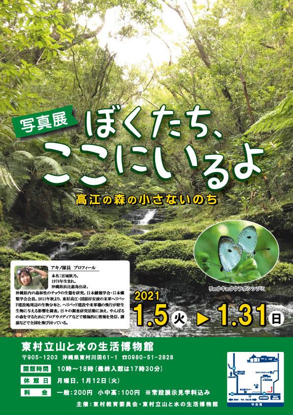 アキノ隊員(宮城秋乃)写真展「ぼくたち、ここにいるよ 高江の森の小さないのち」